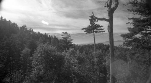 Twin Peaks (Horizon), 2010